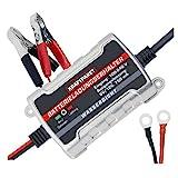 Dino KRAFTPAKET 136303 750mAh-6V/12V Erhaltungsladegerät Batterieladegerät IP65 für KFZ Auto...